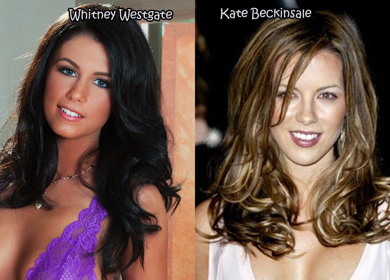 Top pornstar celebrity lookalikes